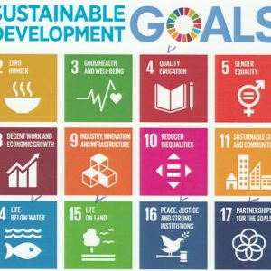 Sustainable development-goals